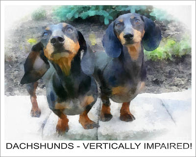 Dachshund Poster Art Print by Betsy Cotton
