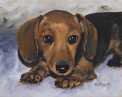 Painting - Dachshund Puppy by Alan Mager