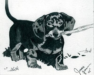 Dachshund Puppy Drawing - Dachshund Puppy by Olde Time  Mercantile