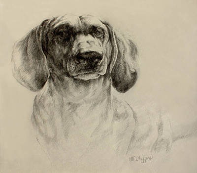 Hot Dogs Drawing - Dachshund Sketch by Derrick Higgins