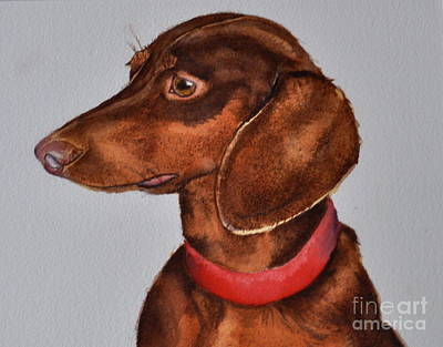Painting - Dachshund Watercolor Painting by Kathy Flood