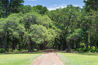 Photograph - Daddy's Lil Ol Driveway by Walt  Baker