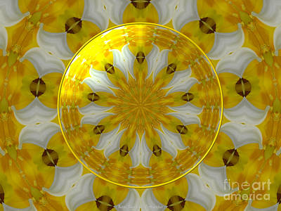 Photograph - Daffodil And Easter Lily Kaleidoscope Under Glass by Rose Santuci-Sofranko