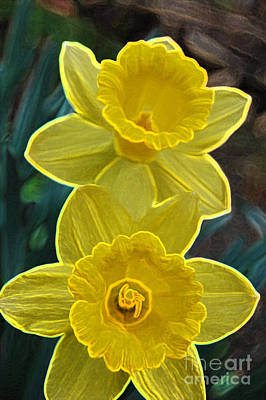 Daffodils Mixed Media - Daffodil Duet By Jrr by First Star Art