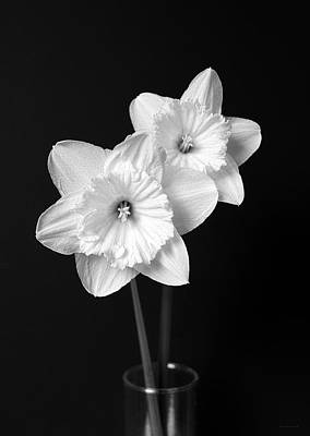 White Flowers Photograph - Daffodil Flowers Black And White by Jennie Marie Schell