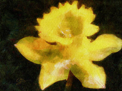 Art Print featuring the painting Daffodil by Greg Collins