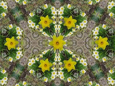 Mixed Media - Daffodil Kaleidoscope by Mike Breau