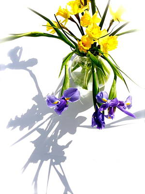 Photograph - Daffodils And Iris by Tracy Male
