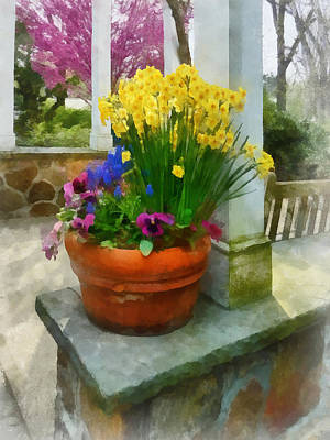 Photograph - Daffodils And Pansies In Flowerpot by Susan Savad