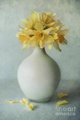 Daffodils In A White Flowerpot Art Print by Jaroslaw Blaminsky