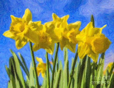 Flower Digital Art - Daffodils by Liz Leyden
