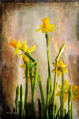 Photograph - Daffodils by Randi Grace Nilsberg