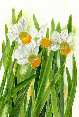 Daffodils With Green Leaves Art Print by Sharon Freeman