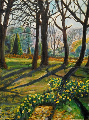 Daffodils Woodward Park Original