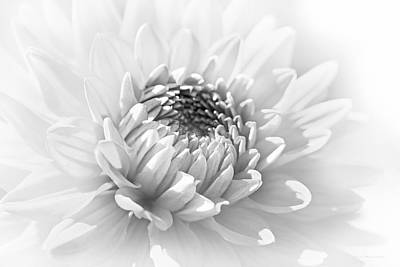Photograph - Dahlia Flower Soft Monochrome by Jennie Marie Schell
