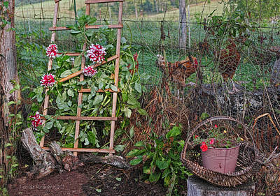 Photograph - Dahlias And Chickens by Denise Romano