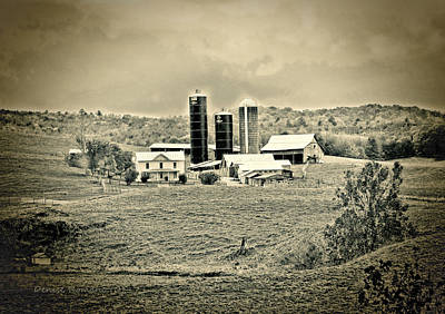 Photograph - Dairy Farm by Denise Romano
