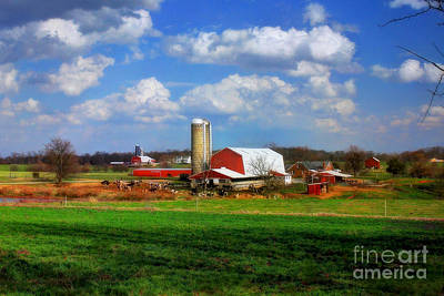 Dairy Farming Photograph - Dairy Land by Reid Callaway