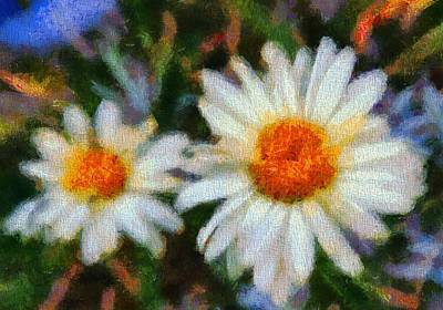 Morning Light Mixed Media - Daisies by Dan Sproul