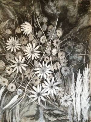 Drawing - Daisies by Giti Ala