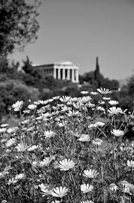 Hephaestus Wall Art - Photograph - Daisies In Ancient Market by George Atsametakis