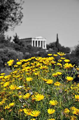Greek Digital Art - Daisies In Athens by George Atsametakis