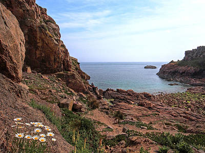 Photograph - Daisies In The Granite Rocks At Corbiere by Gill Billington