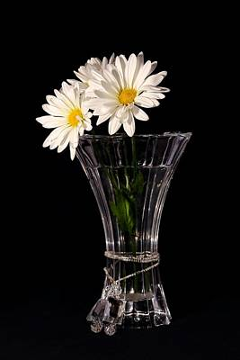 Daisies In Vase Art Print by Tracie Kaska