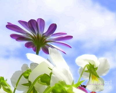 Digital Art - Daisies Looking Up by Angelia Hodges Clay