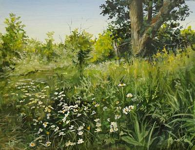 Painting - Daisies by William Brody