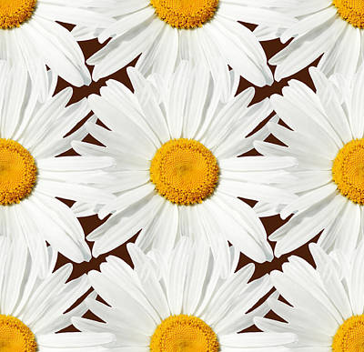 Daisy Digital Art - Daising - 03 by Variance Collections