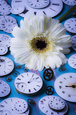 Photograph - Daisy And Watch Faces by Garry Gay