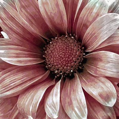 Center Mixed Media - Daisy Daisy Blush Pink by Angelina Vick