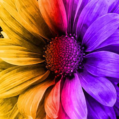 Center Mixed Media - Daisy Daisy Yellow To Purple by Angelina Vick