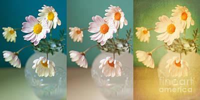 Indoor Still Life Digital Art - Daisy Daydreams by Susan Gary