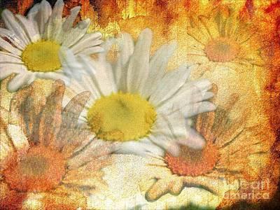 Daisy Delight Art Print by Donald Davis