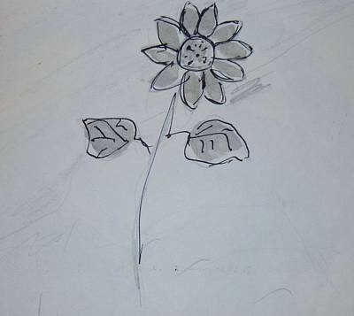 Drawing - Daisy by Erika Chamberlin