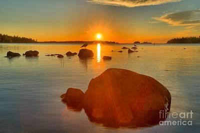 Photograph - Daisy Farm Sunrise by Adam Jewell
