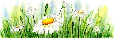 Daisy Field Art Print by Annie Troe