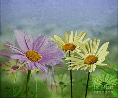 Art Print featuring the digital art Daisy Garden by Shirley Mangini