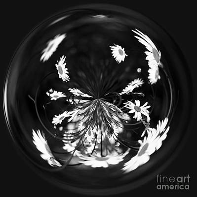 Manipulation Photograph - Daisy Globe by Anne Gilbert