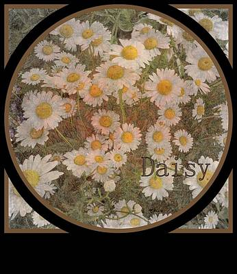 Photograph - Daisy by Jodie Marie Anne Richardson Traugott          aka jm-ART