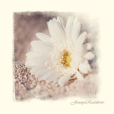 Wedding Flowers Ideas Photograph - Daisy On Sand. Elegant Knickknacks From Jennyrainbow by Jenny Rainbow