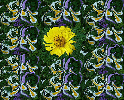 Daisies Photograph - Daisy Poster by Aimee L Maher Photography and Art Visit ALMGallerydotcom