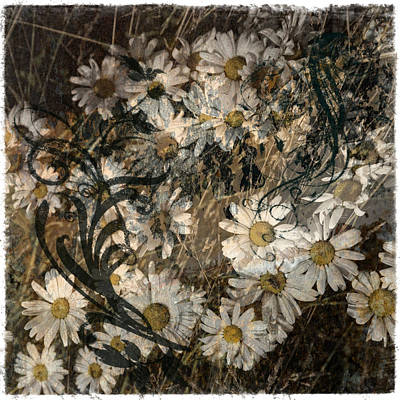 Abstract Photograph - Daisy Tapestry by Barbara Northrup