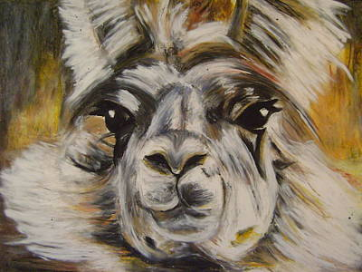 Pastel - Daisy The Llama by Therese Legere