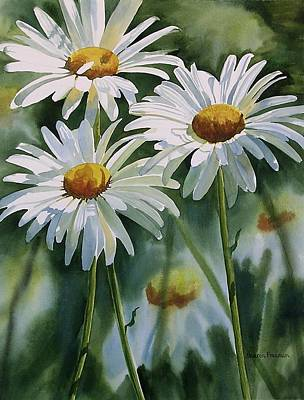 White Daisy Painting - Daisy Trio by Sharon Freeman