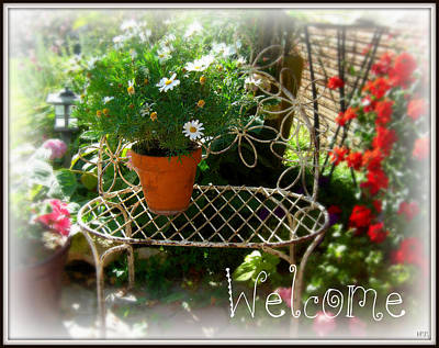 Art Print featuring the photograph Daisy Welcome by Heidi Manly