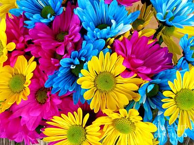 Art Print featuring the photograph Daisys Flowers Bloom Colorful Petals Nature by Paul Fearn