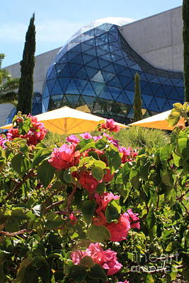 Photograph - Dali Museum With Flowers by Danielle Groenen
